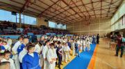 Ugljevik: Slavske svečanosti počele međunarodnim džudo turnirom